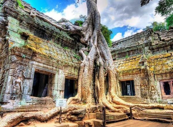 Проживание в Камбодже