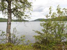 карелия мунозеро отдых лето 2015
