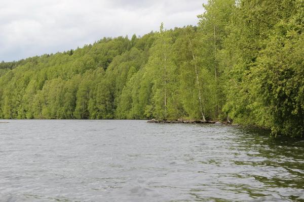 карелия мунозеро лето 2015 года