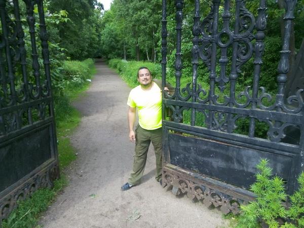 кронштадт парки 2015 год