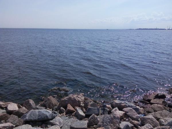 кронштадт финский залив дамба 2015