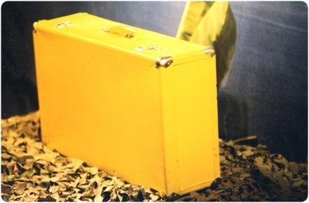 Первый желтый чемодан Казантипа