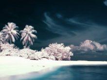 Куда поехать зимой отдыхать