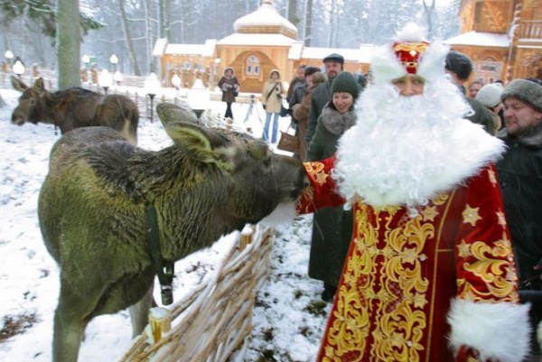 белоруссь беловежская пуща дед мороз