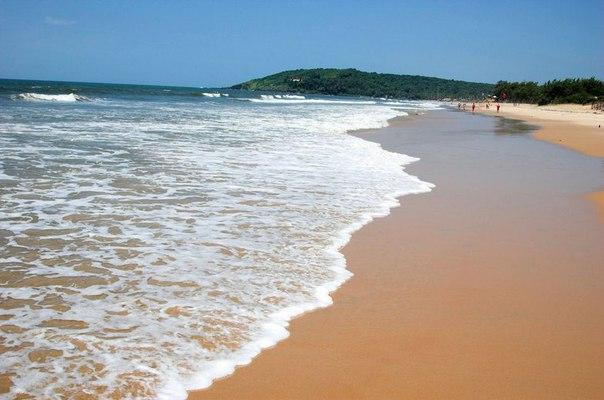 бага пляж северного гоа индия 2016