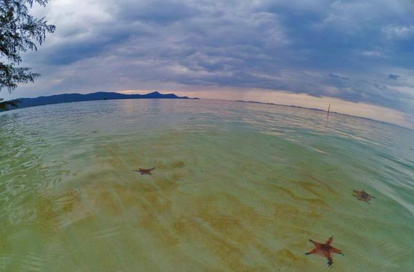 лучшие пляжи Фукуока Вьетнам 2017 - 2018 пляж раш вем морские красные звёзды