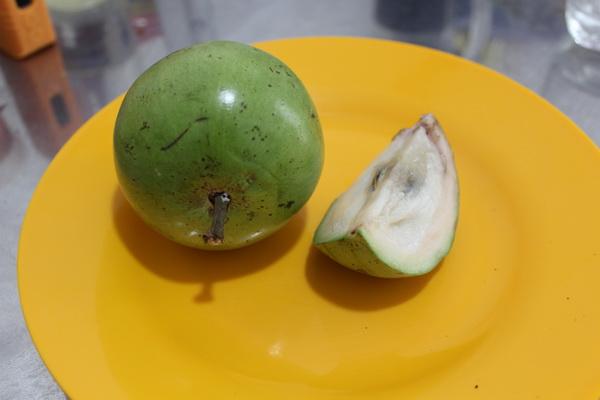 фрукты Вьетнама в 2017 году на острове Фукуок, стоимость, вкус, впечатления и что стоит попробовать молочное звёздное яблоко