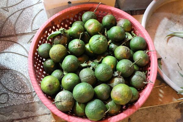фрукты Вьетнама в 2017 году на острове Фукуок, стоимость, вкус, впечатления и что стоит попробовать зеленые тропические апельсины