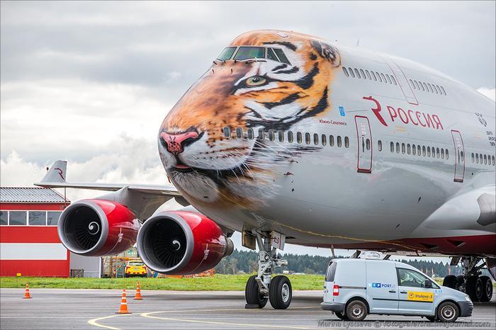 ручная кладь у авиакомпании Россия что можно или нельзя брать в ручную кладь