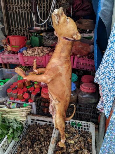 Мертвая собака на дневном рынке Вьетнама