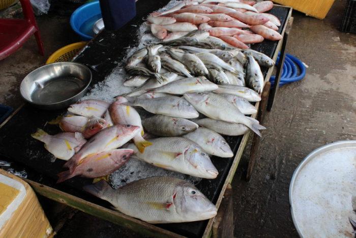 Где купить свежей рыбы, Фукуок, Вьетнам, дневной рынок