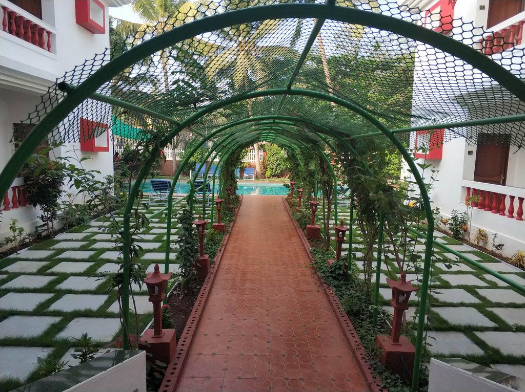 каррис отель в индии отзывы 2020