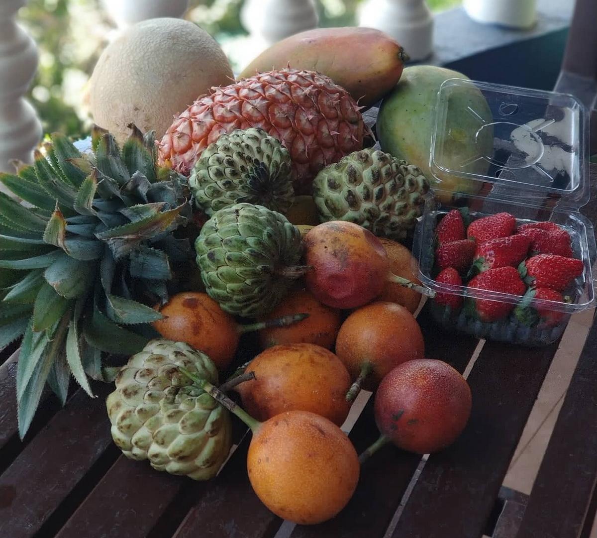 отдых с детьми в Индии в гоа 2020 отзывы фрукты