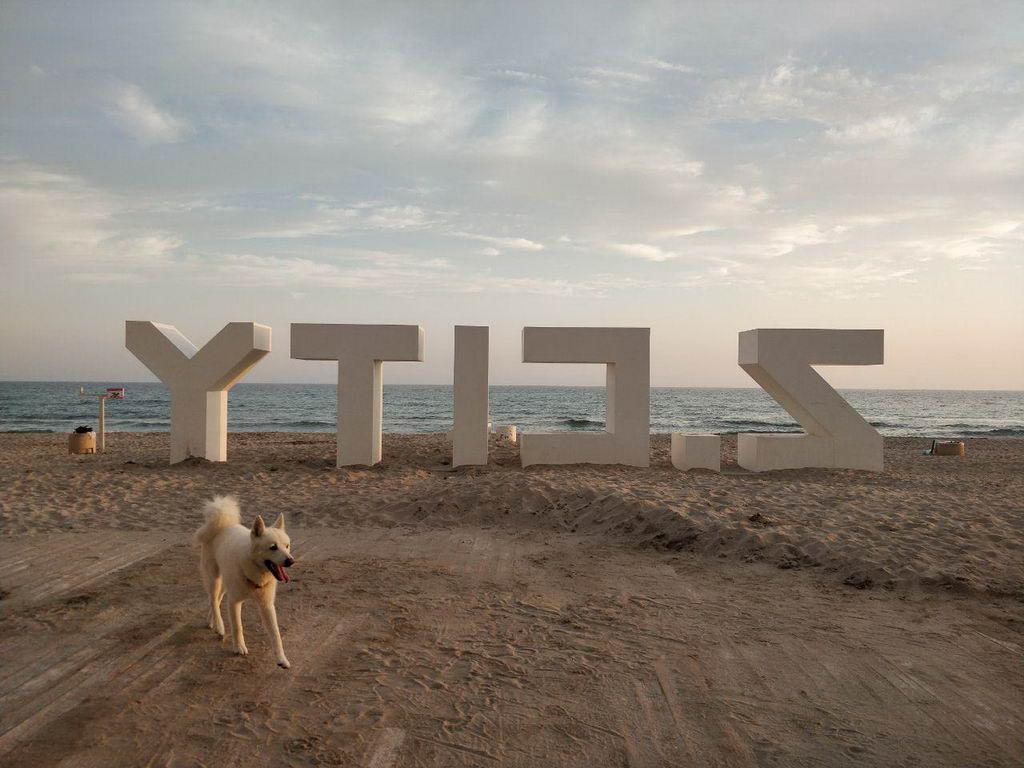 Открытие Z-city - где отдыхать в Крыму