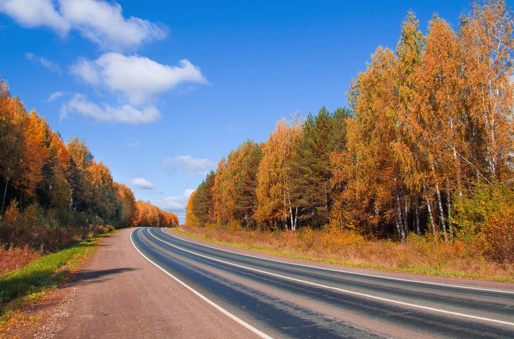 дорога в Питере на машине осенью