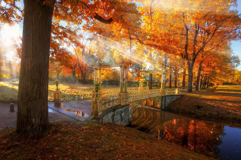 отдых в Питере осенью