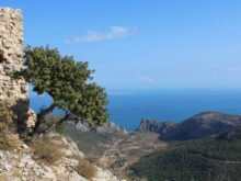 что посмотреть в Турции в провинции Мерсин рядом с Ташуджу крепости пляжи город залив