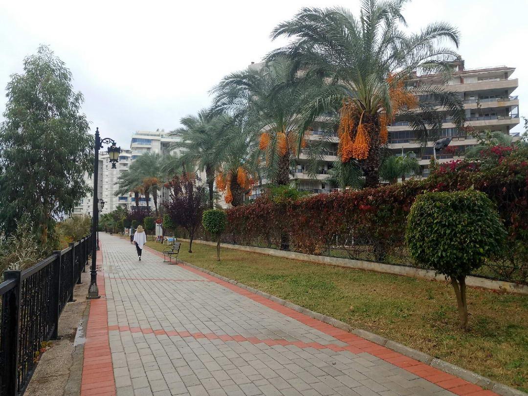 погода в Турции в марте в Алании