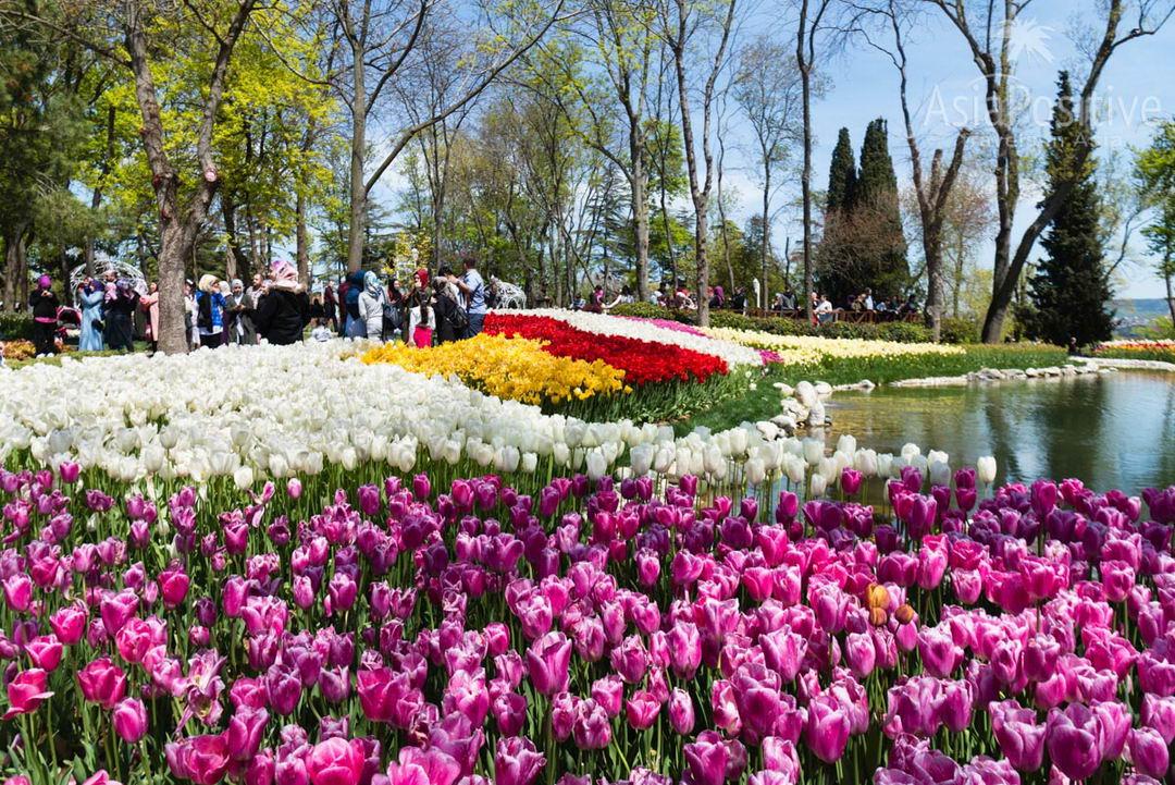 погода Турция Стамбул апрель месяц