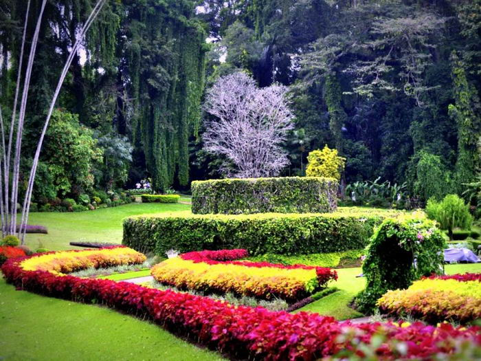 никитский ботанический сад что посмотреть в крыму достопримечательности
